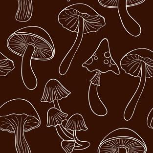 bg-mushroom